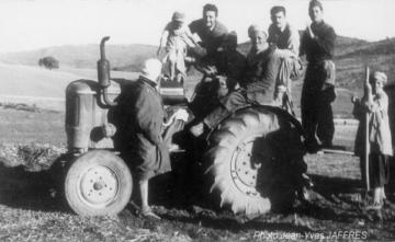 Tracteur-en-Algerie_mf_ph-J-Y-JAFFRES.jpg